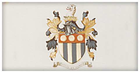 Coat of Arms Illustration Example
